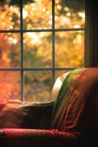 autumn book chair