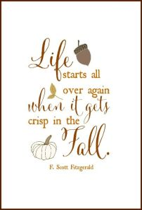 fitzgerald fall quote